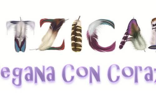 Huitzicalli logo completo